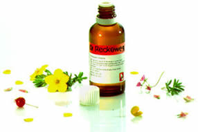* Dr Reckeweg R94 * (Cicatin) (Calendula lotion)